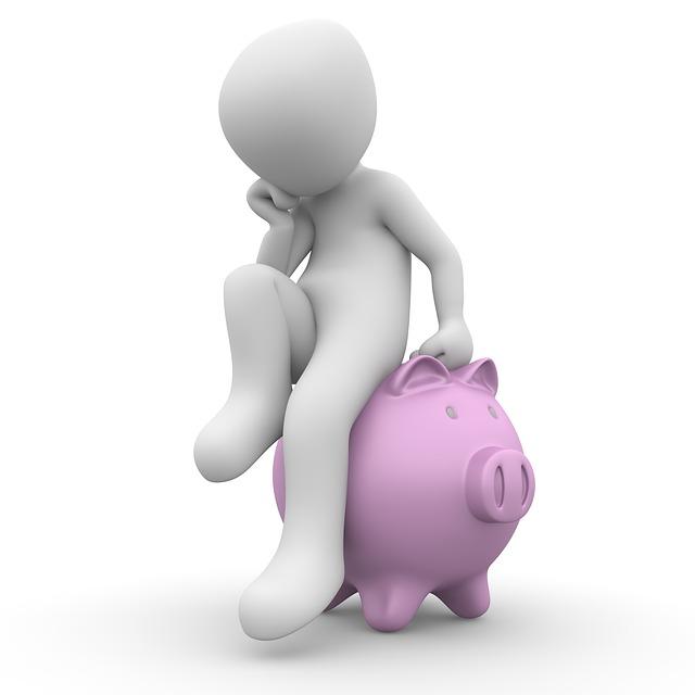 Peníze, jak s nimi vystačit